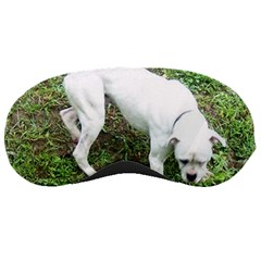 Boxer White Puppy Full Sleeping Masks