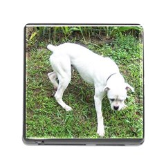 Boxer White Puppy Full Memory Card Reader (Square)