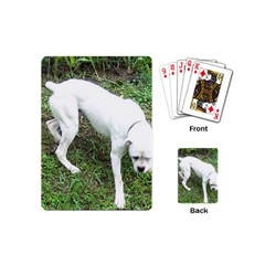 Boxer White Puppy Full Playing Cards (Mini)