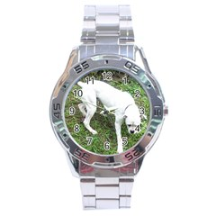 Boxer White Puppy Full Stainless Steel Analogue Watch
