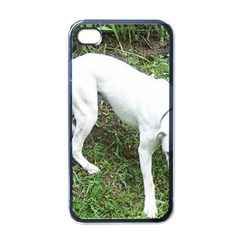 Boxer White Puppy Full Apple iPhone 4 Case (Black)