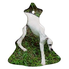Boxer White Puppy Full Ornament (Christmas Tree)