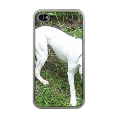 Boxer White Puppy Full Apple iPhone 4 Case (Clear)