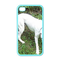 Boxer White Puppy Full Apple iPhone 4 Case (Color)