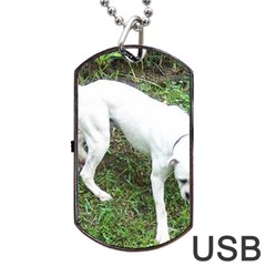 Boxer White Puppy Full Dog Tag USB Flash (One Side)