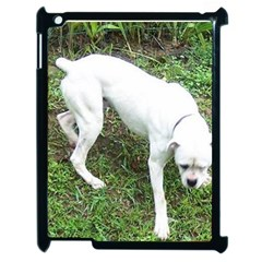 Boxer White Puppy Full Apple iPad 2 Case (Black)