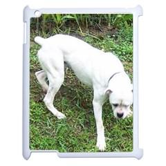Boxer White Puppy Full Apple iPad 2 Case (White)