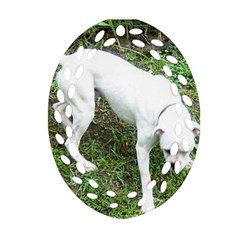 Boxer White Puppy Full Oval Filigree Ornament (2-Side)