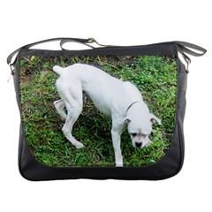 Boxer White Puppy Full Messenger Bags