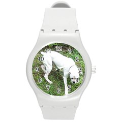 Boxer White Puppy Full Round Plastic Sport Watch (M)