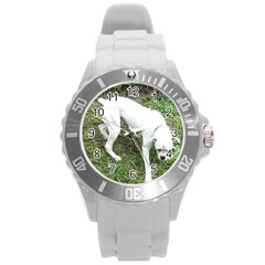 Boxer White Puppy Full Round Plastic Sport Watch (L)