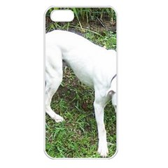 Boxer White Puppy Full Apple iPhone 5 Seamless Case (White)