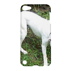 Boxer White Puppy Full Apple iPod Touch 5 Hardshell Case