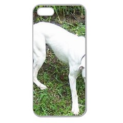 Boxer White Puppy Full Apple Seamless iPhone 5 Case (Clear)