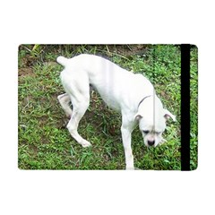 Boxer White Puppy Full Apple iPad Mini Flip Case