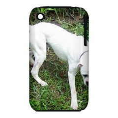 Boxer White Puppy Full iPhone 3S/3GS