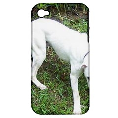 Boxer White Puppy Full Apple iPhone 4/4S Hardshell Case (PC+Silicone)