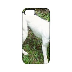 Boxer White Puppy Full Apple iPhone 5 Classic Hardshell Case (PC+Silicone)