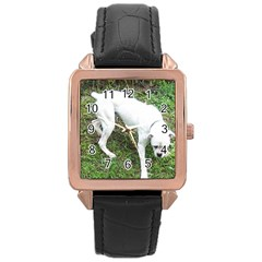 Boxer White Puppy Full Rose Gold Leather Watch