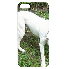 Boxer White Puppy Full Apple iPhone 5 Hardshell Case with Stand