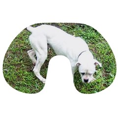 Boxer White Puppy Full Travel Neck Pillows