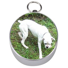 Boxer White Puppy Full Silver Compasses