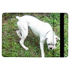 Boxer White Puppy Full iPad Air Flip