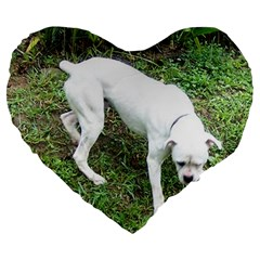 Boxer White Puppy Full Large 19  Premium Flano Heart Shape Cushions