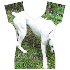 Boxer White Puppy Full Women s V-Neck Cap Sleeve Top