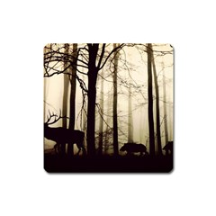 Forest Fog Hirsch Wild Boars Square Magnet