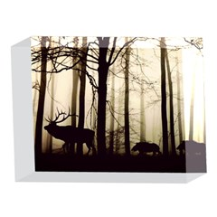 Forest Fog Hirsch Wild Boars 5 x 7  Acrylic Photo Blocks