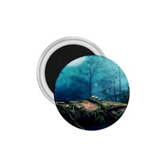Mysterious fantasy nature  1.75  Magnets