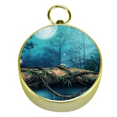 Mysterious fantasy nature  Gold Compasses