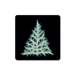 Christmas fir, green and black color Square Magnet