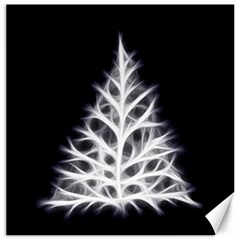 Christmas fir, black and white Canvas 16  x 16