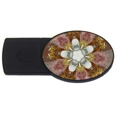 Elegant Antique Pink Kaleidoscope Flower Gold Chic Stylish Classic Design USB Flash Drive Oval (4 GB)