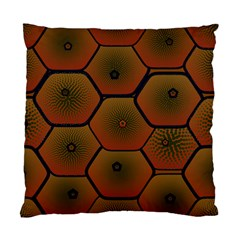 Psychedelic Pattern Standard Cushion Case (Two Sides)