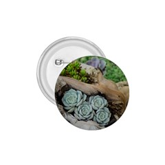 Plant Succulent Plants Flower Wood 1.75  Buttons