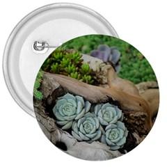 Plant Succulent Plants Flower Wood 3  Buttons
