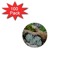 Plant Succulent Plants Flower Wood 1  Mini Buttons (100 pack)