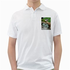 Plant Succulent Plants Flower Wood Golf Shirts