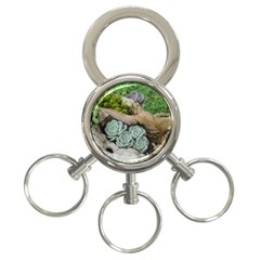 Plant Succulent Plants Flower Wood 3-Ring Key Chains