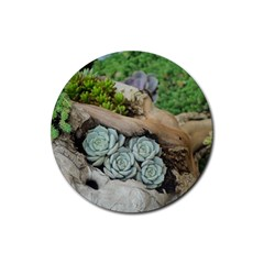 Plant Succulent Plants Flower Wood Rubber Round Coaster (4 pack)
