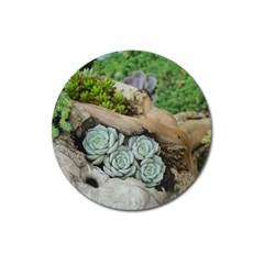 Plant Succulent Plants Flower Wood Magnet 3  (Round)