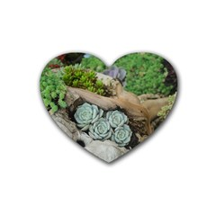 Plant Succulent Plants Flower Wood Heart Coaster (4 pack)