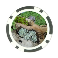 Plant Succulent Plants Flower Wood Poker Chip Card Guards