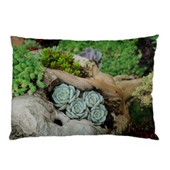 Plant Succulent Plants Flower Wood Pillow Case
