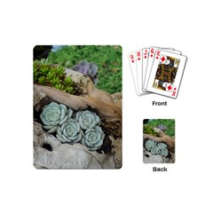 Plant Succulent Plants Flower Wood Playing Cards (Mini)