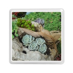 Plant Succulent Plants Flower Wood Memory Card Reader (Square)