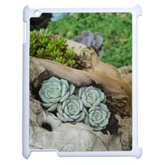 Plant Succulent Plants Flower Wood Apple iPad 2 Case (White)